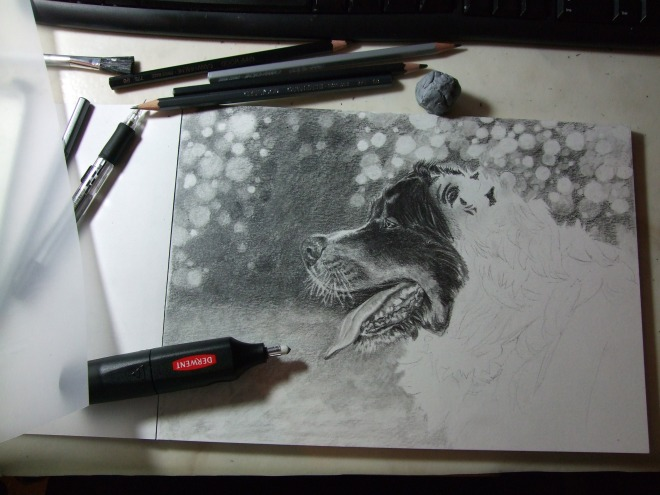 Caran D'ache Grafwood graphite pencils, blending stump and kneaded eraser. 8 hours spent on this so far.