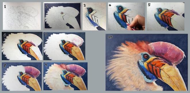 hornbill step by step